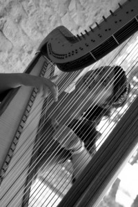 Wedding Harp Image 4