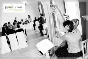 Wedding Harp Image 2
