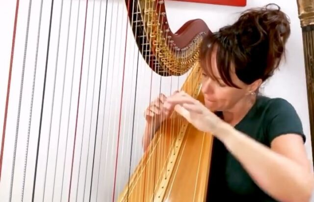 "After reposting D'Angelo yesterday I thought it would be rude to leave out @gretchenparlato. Her music is on loop in my car with Moonchild. It would be a dream to work with her.. (she soothes my soul!)This piece is called ""Butterfly"" by the legendary @herbiehancock ❤️ #jazz#jazzharp#harpjazz#musician #music#recording#studio#improvising#womenin_jazz#harp#harpist#musician#discoverlivemusic#dorothyashby#alicecoltrane#jazzvideo#practicalharpist#livemusic#creativity#welsh#musicmatters#insta#letthemusicplay#harpistsofinstagram#hancockinstitute#herbiehancockofficial #butterfly #gretchenparlato"
